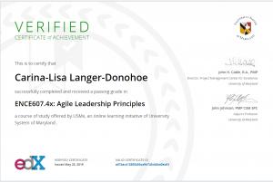 agile leadership coaching training hamburg