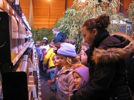 La superbe exposition organisée à Stiring à emerveillée les enfants !