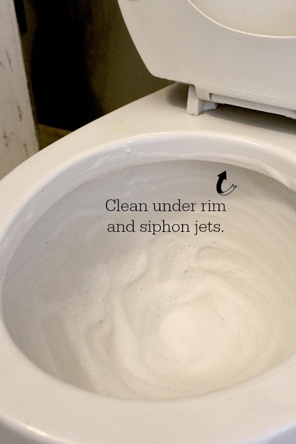 Cracked Toilet Bowl Base