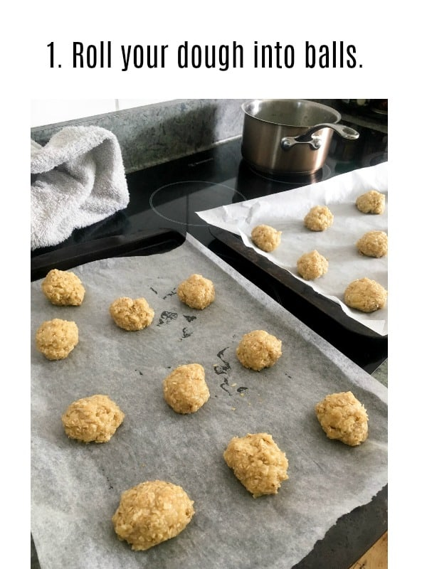 crunchy coconut and oatmeal cookies