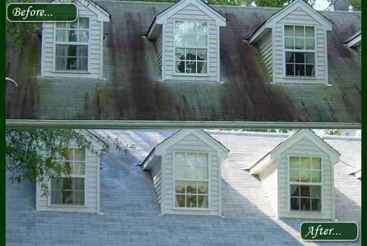 Roof Cleaner QSE 1500 Roof Washing Cleans Your Shingle Roof