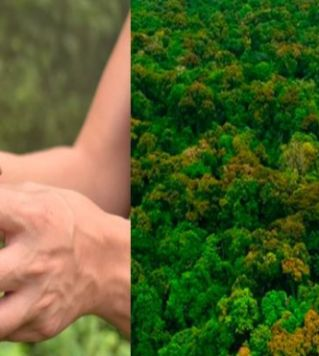 Drones, Automation, & Reforestation - Clean Future