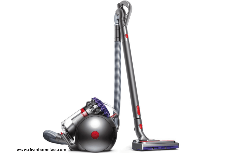 Dyson Ball Animal 2 Vacuum Cleaner Reviews