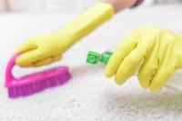 How Often Should I Clean My Carpet?