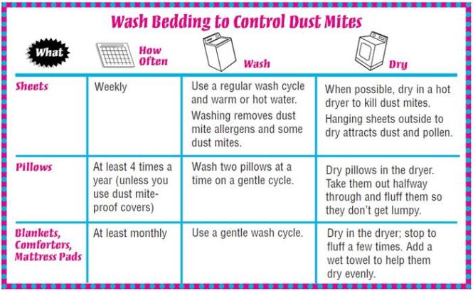 To Control Dust Mites In The Bedroom