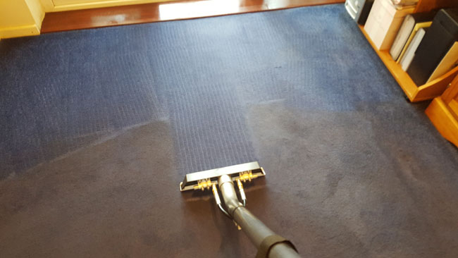 cleaning-solution-carpet