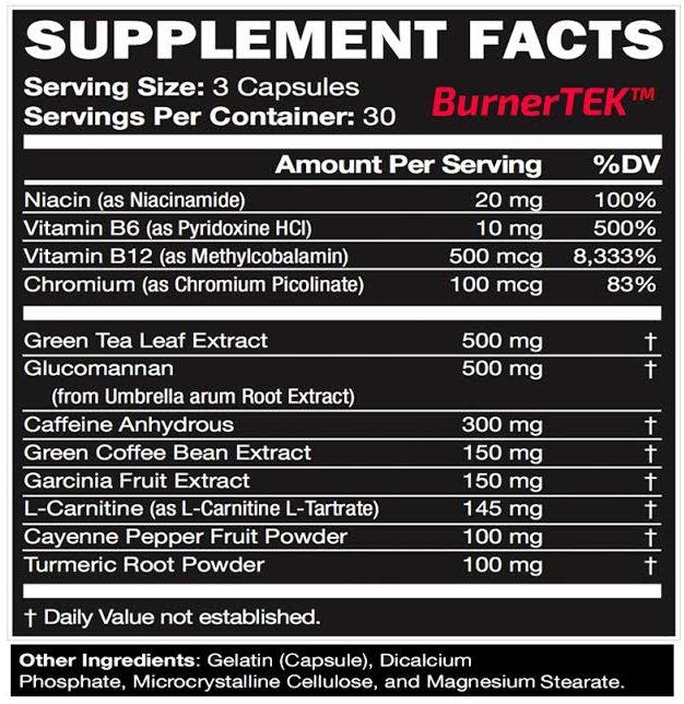 BurnerTEK review of ingredients