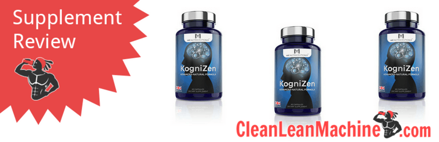 Kognizen Review