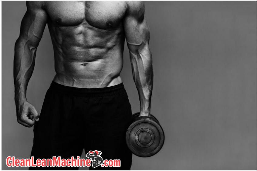 vegan fitness diet guide bodybuilder