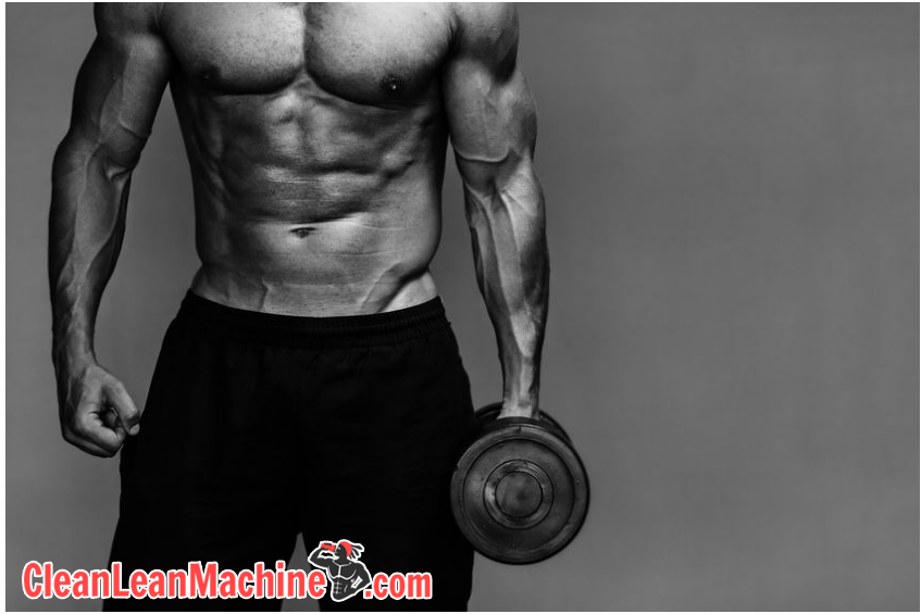vegan fitness diet guide bodybuilder