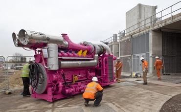 biomass-cogeneration