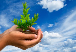 environmental-agreements