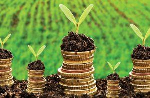 green-entrepreneurs