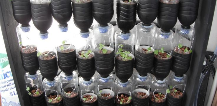 hydroponic-system-water-bottles
