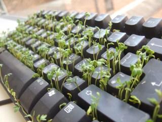 hydroponic-system-keyboard