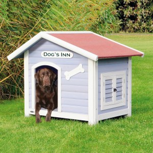 house-for-dog