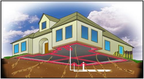 anti-termite-pipe-network