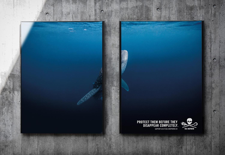 090 004 halve walvis
