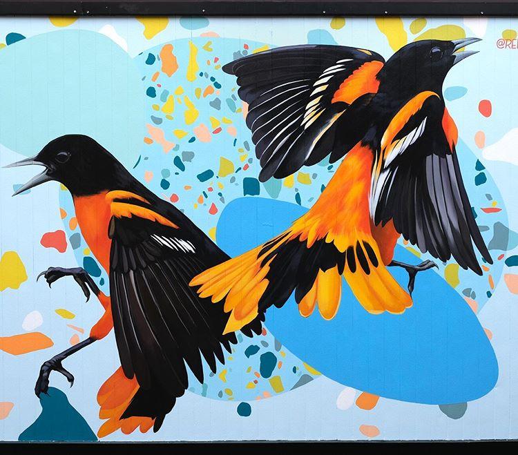 091 005 2 kleurrijke vogels