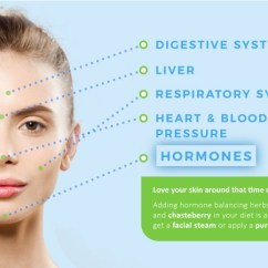 Hormonal Acne Diagram Rv Towing Wiring Face Mapping 5 Proven Ways To Fight Faster Better Chin Jawline