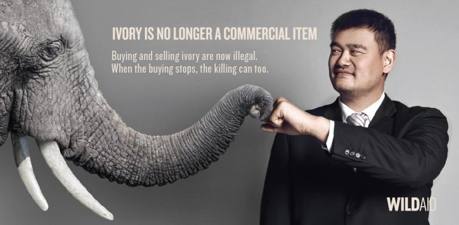 china ivory ban