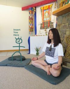 stick cartoon meditator drawn on a cushion - insert you here