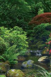 Meditation Garden Window