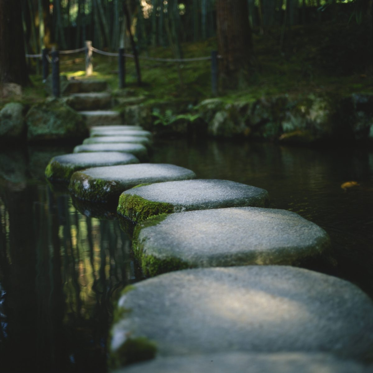 Image of stones on a water signifying the emotional release therapy services offered by Daniel. Daniel is an experienced practitioner who provides the following services: emotional integration therapy, emotional clearing therapy releasing stuck emotions, emotional release counselling & releasing trapped emotions. Daniel has been working with a lot of people and helped them in their journey of healing emotional pain, clearing negative emotions, letting go of grief, anger release & releasing negative emotions. His emotional detox therapy services are highly acknowledged as some of the best.