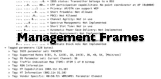 Management Frames title on blurred Wireshark capture.