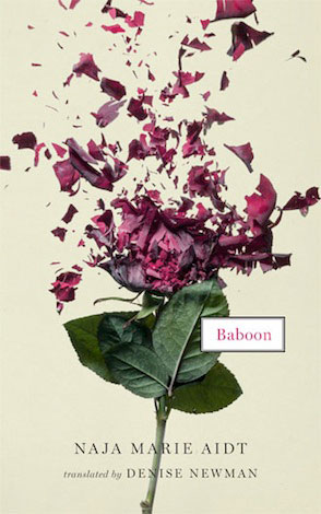 BABOON, short stories by Naja Marie Aidt reviewed by KC Mead-Brewer