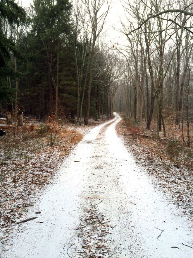 Stokes State Forest, Sussex County, NJ