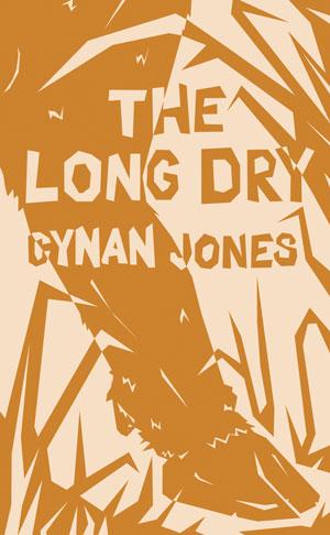 THE LONG DRY, a novel by Cynan Jones, reviewed by Melanie Erspamer