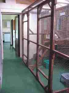 Corridor at Cleeve Cats
