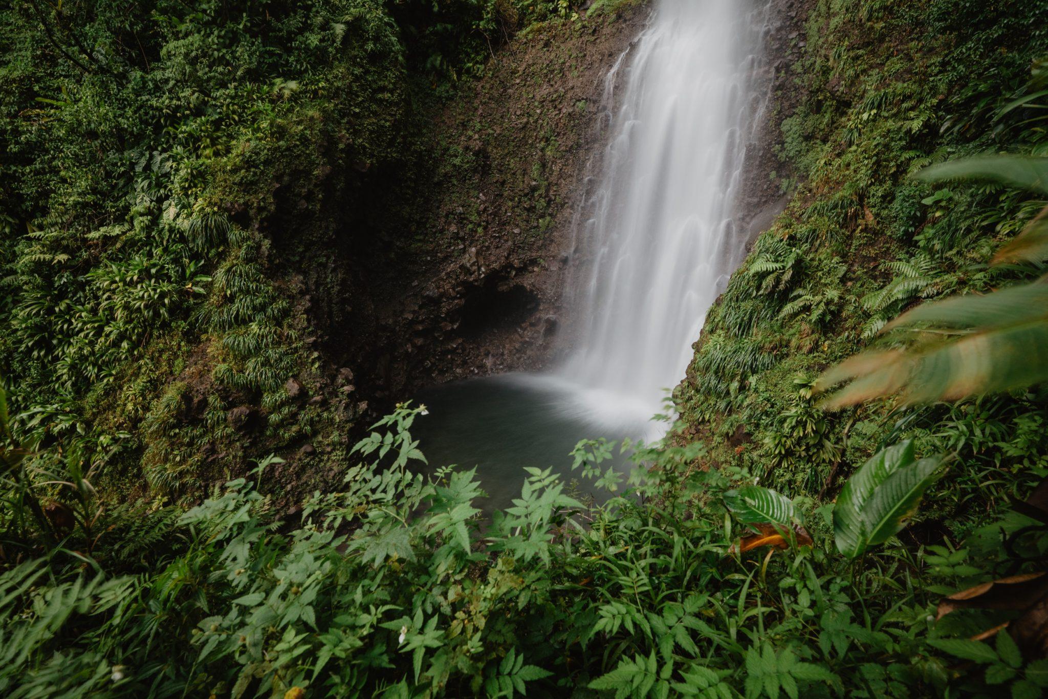 Middleham Falls, Dominique