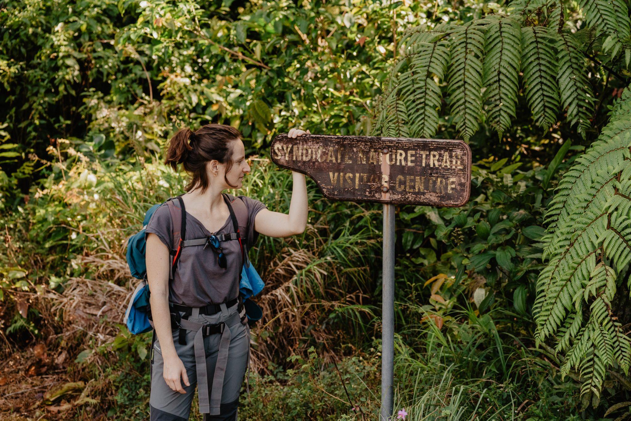 Syndicate Nature Trail, Morne Diablotin, Dominique