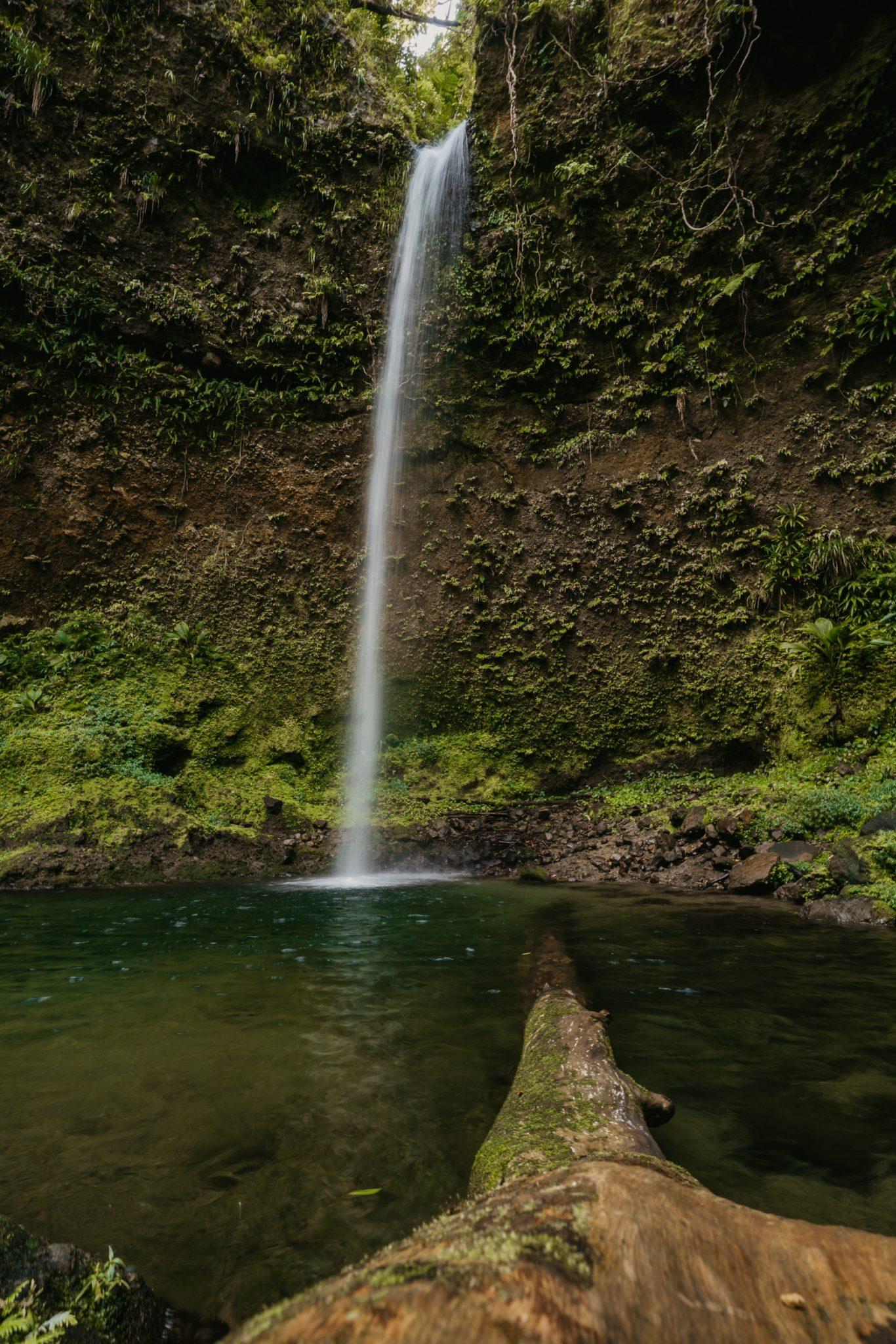 Spanny Falls, Dominique