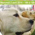 Rencontre et sensibilisation avec les chiens guides d'aveugles, mercredi 2 avril 2014 - Clermont Oise