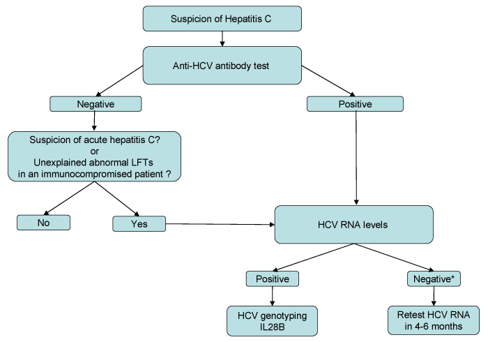 liver panel diagram wiring 1 light 3 switches test interpretation approach to the patient with diagnostic algorithm for hepatitis c infection