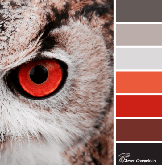 Red Eye-Flight color scheme from Clever Chameleon