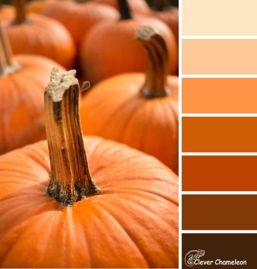 Pumpkin colour scheme by Clever Chameleon