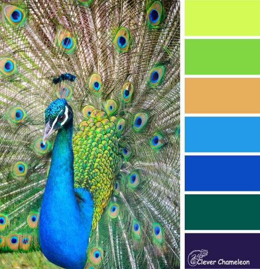 Peacock Parade colour scheme from Clever Chameleon