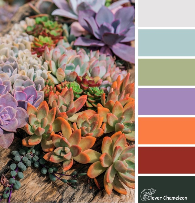 Sew Succulent colour board at Clever Chameleon