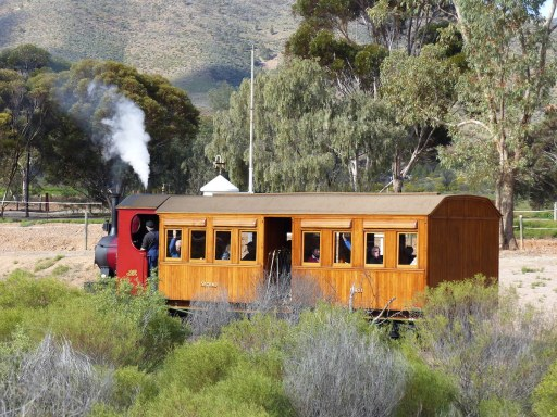 Coffee pot steam train at Woolshed Flat