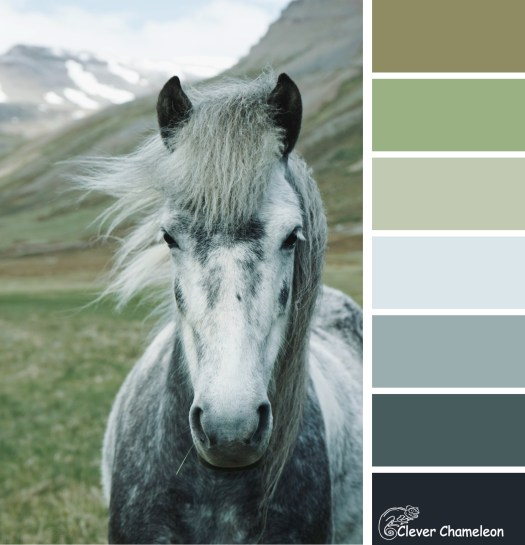 A little horse colour board at Clever Chameleon