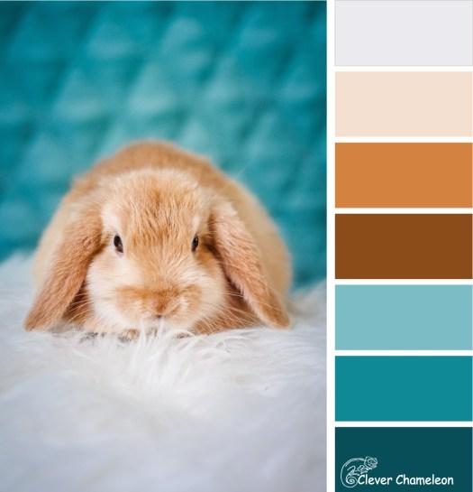 Killer bunny colour scheme at Clever Chameleon