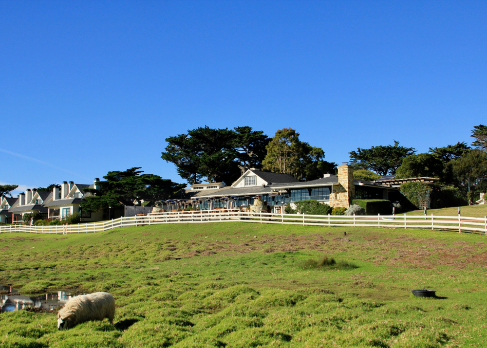 A Weekend in Carmel