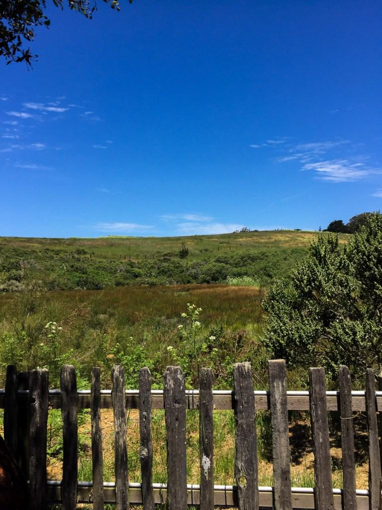 A Weekend in West Marin