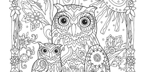 creative haven owls coloring book creative haven coloring books - Coloring Book Animals