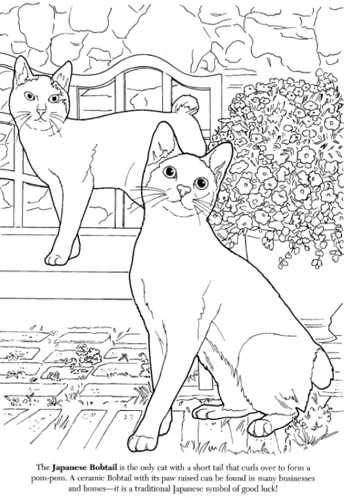 cat coloring book dover cat lovers page1?w\u003d810 including cat lovers coloring book additional photo inside page cats on the cat coloring book including mimi vang olsen cats coloring book on the cat coloring book also 209 best images about art cat coloring on pinterest coloring on the cat coloring book besides best adult coloring books for cat lovers on the cat coloring book