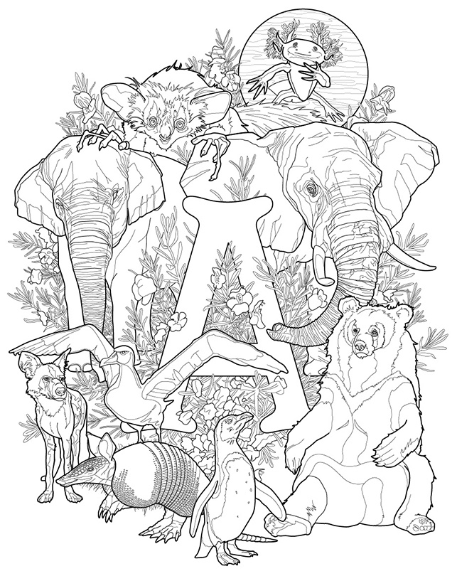Endangered Animals Brought To Life In New Coloring Book